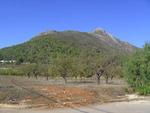 View of Penya Roca from valley floor